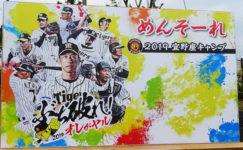 2019「沖縄」プロ野球キャンプ、日程一覧