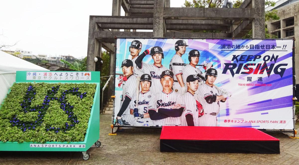 2019「ヤクルトスワローズ」沖縄キャンプ、日程、場所、宿泊ホテル、オープン戦
